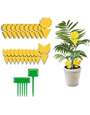 Yellow Dual-Sided Gnat Trap, Sticky Fly Trap, Disposable Insect Catcher Sticky Board for Mosquitoes, Houseplant, Garden (26 Pack)