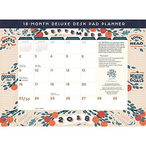 High Note 2018 18-Month Deluxe Desk Pad Planner: Beautiful Contemporary Organizer With Vintage Styling Featuring Unique, Original, Designer Art by Jill De Haan (CHX0309) (Owl Desk Calendar)