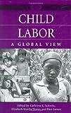 Child Labor, Cathryne L. Schmitz, Elizabeth KimJin Traver, Desi Larson, 0313322775