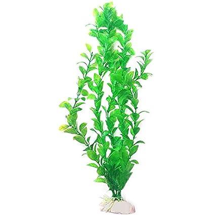 oobest Figura decorativa para acuario (25 cm), diseño de pecera, color verde y morado: Amazon.es: Productos para mascotas
