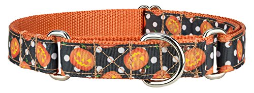 Country Brook Design Moonlight Grin Ribbon Martingale Dog Collar - Medium