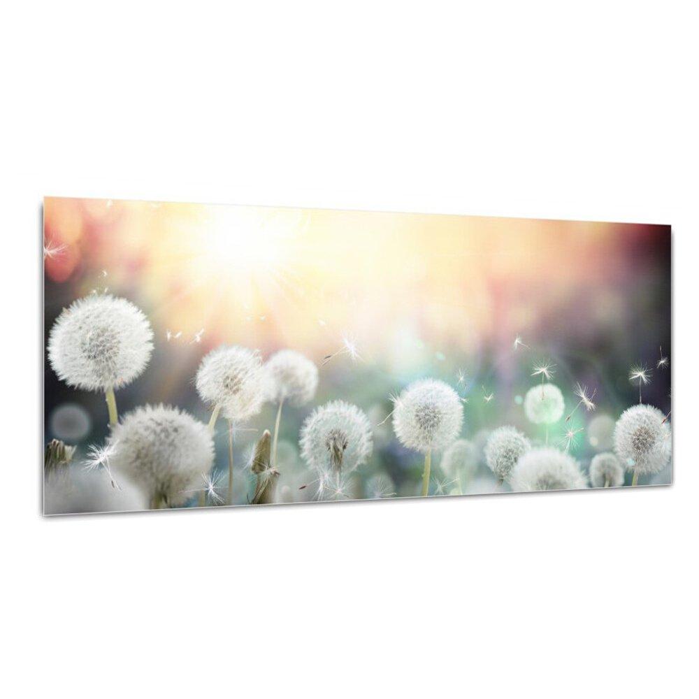 DekoGlas Glasbild 'Pusteblume' Echtglas Bild Küche, Wandbild Flur Bilder Wohnzimmer Wanddeko, einteilig 125x50 cm