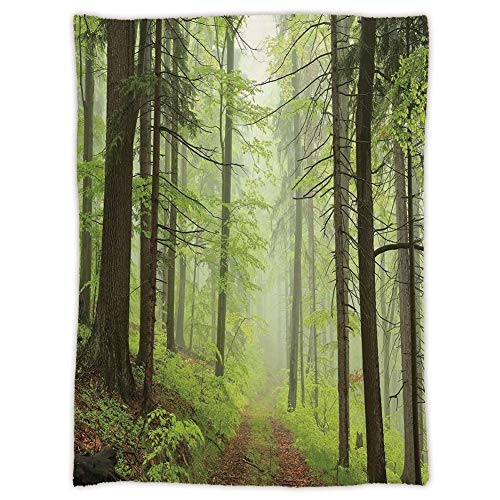 Outdoor Alder Chair (Yaoni uper Soft Throw Blanket Custom Cozy Thickened Blanket,Outdoor,Trail Trough Foggy Alders Beeches Oaks Coniferous Grove Hiking Theme,Light Green Light Yellow,Suitable for Sofas,beds)
