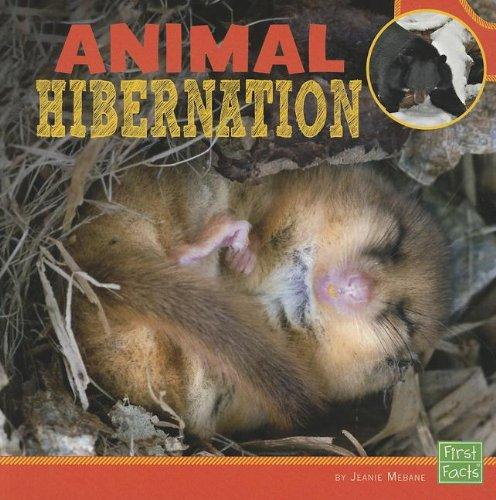 Animal Hibernation (Learn about Animal Behavior)