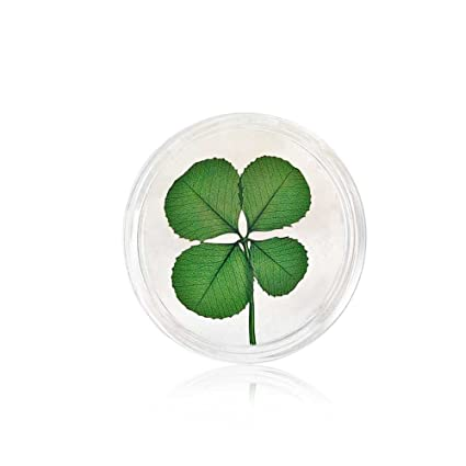 Real Four Leaf Clover Good Luck Pocket Token Coin