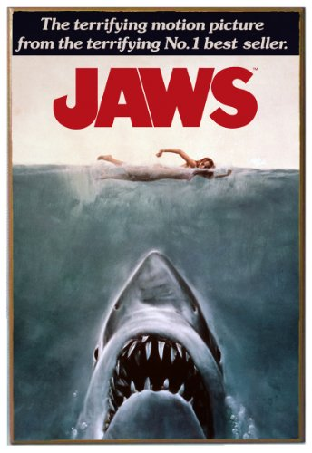 Silver Buffalo JW0136 Jaws Movie Poster Wood Wall Decor, 13
