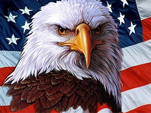 LIPHISFUN 5D Diy Diamond Painting Full Drill Square Resin Rhinestone Embroidery Unfinished Cross Stitch Home Decor Gift Eagle flag(30x40cm) (Embroidery Flag Eagle)