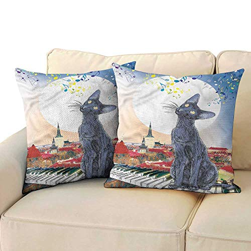 RuppertTextile Cat Polyester Pillowcase Cat on Rooftop Sunset Music Suitable for Hair and Skin Health W14 x L14 ()