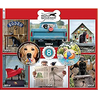 Ron Schmidt 8 in 1 Multipack Puzzles - (2) 300, (4) 550, (1) 750, (1) 1000 Pieces: Toys & Games