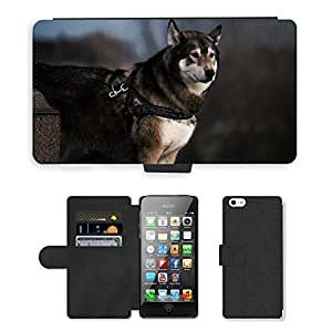 Super Stella Cell Phone Card Slot PU Leather Wallet Case // M00146705 Animal Dog Husky Pet Cute Canine // Apple iPhone 5 5S 5G