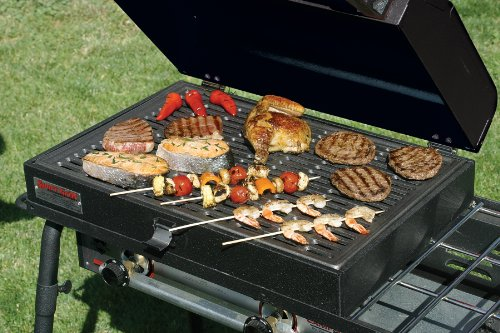 Buy camp grill stove