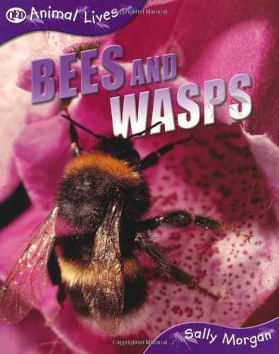Bees and Wasps (QED Animal Lives)