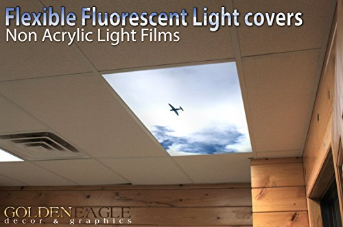 Small Cessna Plane - 2ft x 4ft Drop Ceiling Fluorescent Decorative Ceiling Light Cover Skylight Film - Sky Panel