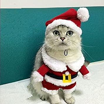 Ohohe2525 Christmas Cat Clothes Pet Dog Cat Costume Santa Claus Costume  Winter Christmas Pet Coat Apparel - Amazon.com : Ohohe2525 Christmas Cat Clothes Pet Dog Cat Costume