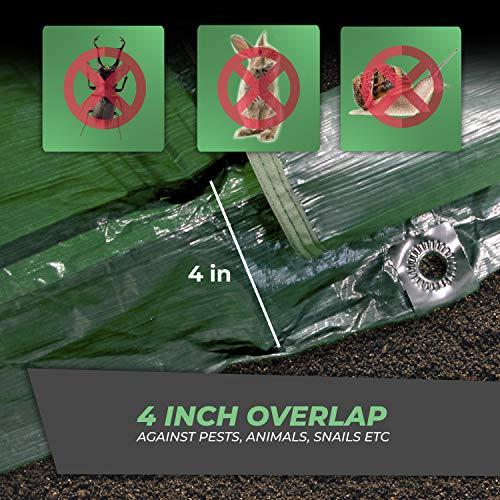 Bio Green SD300 Superdome Growtunnel, Garden Cl Length 9.8 x Width 2.3 ft, 2.6 x 2.3X 9.8', Transparent/Green by Bio Green (Image #5)
