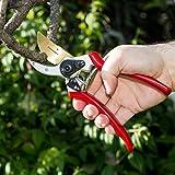 ClassicPRO Titanium Pruning Shears - Best Tree