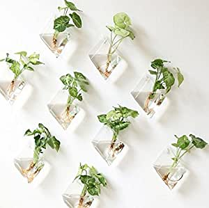 2 Pack Decorative Terrariums Indoor Outdoor Glass Diamonds Wall Glass Hanging Planter Glass Flower Pots Plant Containers