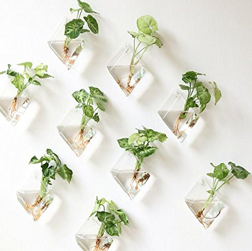 2-pack-decorative-terrariums-indoor-outdoor-glass-diamonds-wall-glass-hanging-planter-glass-flower-p