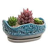 Turquoise & Gray Clover Design Ceramic Flower Plant Pot / Decorative Centerpiece Planter with Saucer