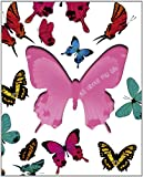 All About My Life  - Butterfly (Life Canvas)