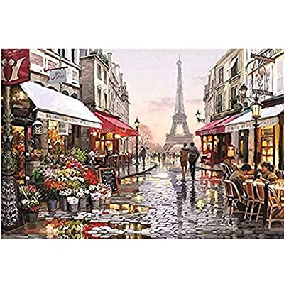 1000 Piece Jigsaw Puzzle for Adult Eiffel Tower Flower Street Puzzle Game Toys Gift DIY Collectibles Wall Decoration: Clothing