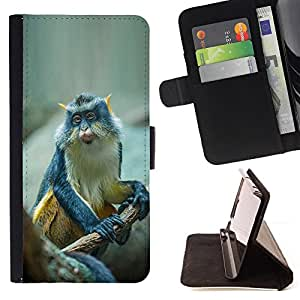 Jordan Colourful Shop - Cute Small Ape Monkey Exotic Tropical For Apple Iphone 5C - Leather Case Absorci???¡¯???€????€????????&