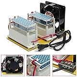 Daxiangx AC 110V/ 20g Commercial Ozone Generator Air Purifiers Disinfection Machine+Fan