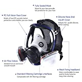 Organic Vapor Full Face Respirator Safety Mask With