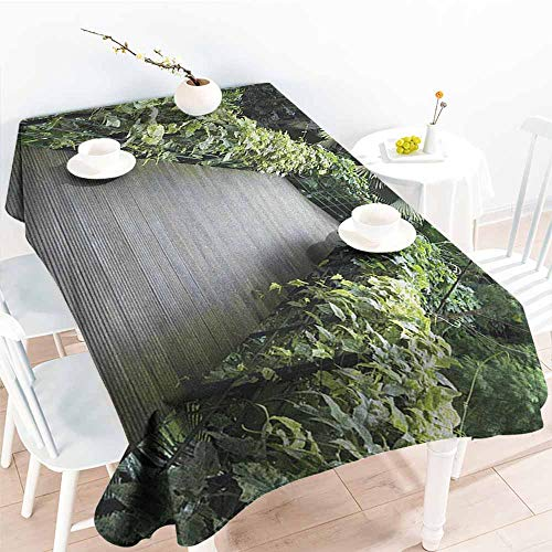 familytaste Asian,Wholesale tablecloths Scenic Wooden Pathway in Singapore Botanical Garden Fence Rainforest Tropical 50