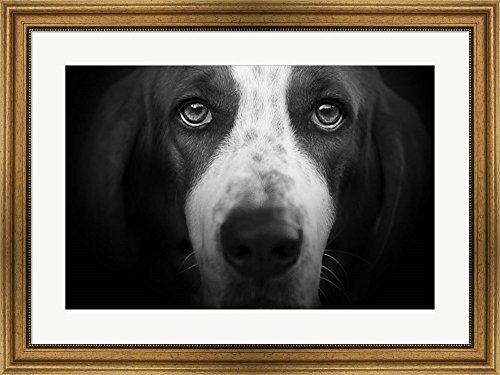 Basset Hound by Lori Hutchison Framed Art Print Wall Picture, Wide Gold Frame, 32 x 24 (Basset Hound Photo Frame)