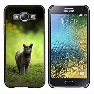 Caucho caso de Shell duro de la cubierta de accesorios de protección BY RAYDREAMMM - Samsung Galaxy E5 E500 - CAT CAZA