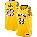 NDPOTCTT Men's Los Angeles James Gold Purple Swingman Jersey - Icon Edition