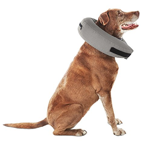 Well & Good Inflatable Collar for Dogs and Cats, Medium by Well & Good