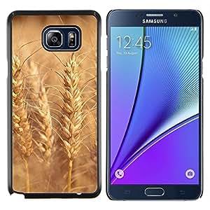 Caucho caso de Shell duro de la cubierta de accesorios de protección BY RAYDREAMMM - Samsung Galaxy Note 5 5th N9200 - Sunset Beautiful Nature 108