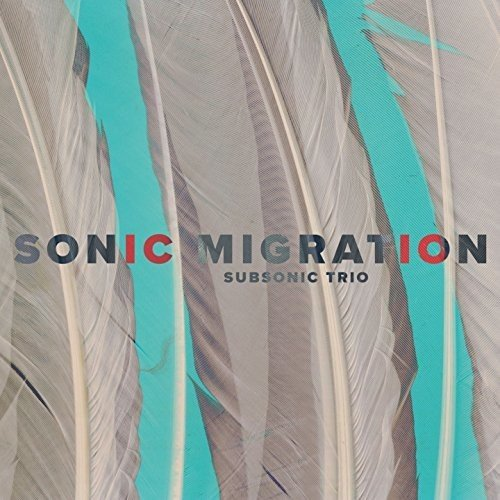 SUBSONIC TRIO - Sonic Migration