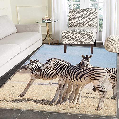 Wildlife Area Rug Carpet Three Zebras in Namibia National Park Africa Savannah Safari Theme Customize Door mats for Home Mat 2'x3' Pale Blue Black Beige ()