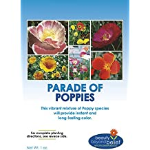 Parade of Poppy Wildflower Seeds Bulk + 8 BONUS Gardening eBooks, Open-Pollinated Wildflower Seed Mix Packets, Non-GMO, No Fillers, Annual, Perennial Wildflower Seeds, Year Round Planting - 1 oz