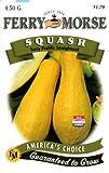 Ferry-Morse 1373 Squash Seeds, Ea Prol Straightneck (4.5 Gram Packet), Appliances for Home