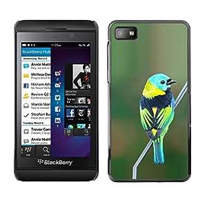 TopCaseStore / la caja del caucho duro de la cubierta de protección de la piel - Green Nature Branch Teal - Blackberry Z10