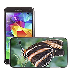 Etui Housse Coque de Protection Cover Rigide pour // M00115137 Congregado naranja Roble tigre mariposa // Samsung Galaxy S5 S V SV i9600 (Not Fits S5 ACTIVE)