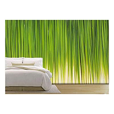 Leaf of Papyrus Abstract Background Wall Decor - Wall Murals