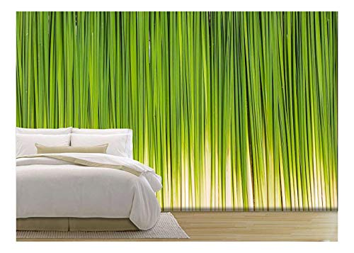 Leaf of Papyrus Abstract Background Wall Decor