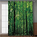 Joy2016 Blackout Curtains for Patio Sliding Door, Extra Wide Draperies for Double Window, Thermal Insulated Energy Efficiency Blackout Curtains for Bedroom Decor, 108 Inch Wide x 63 Inch Length