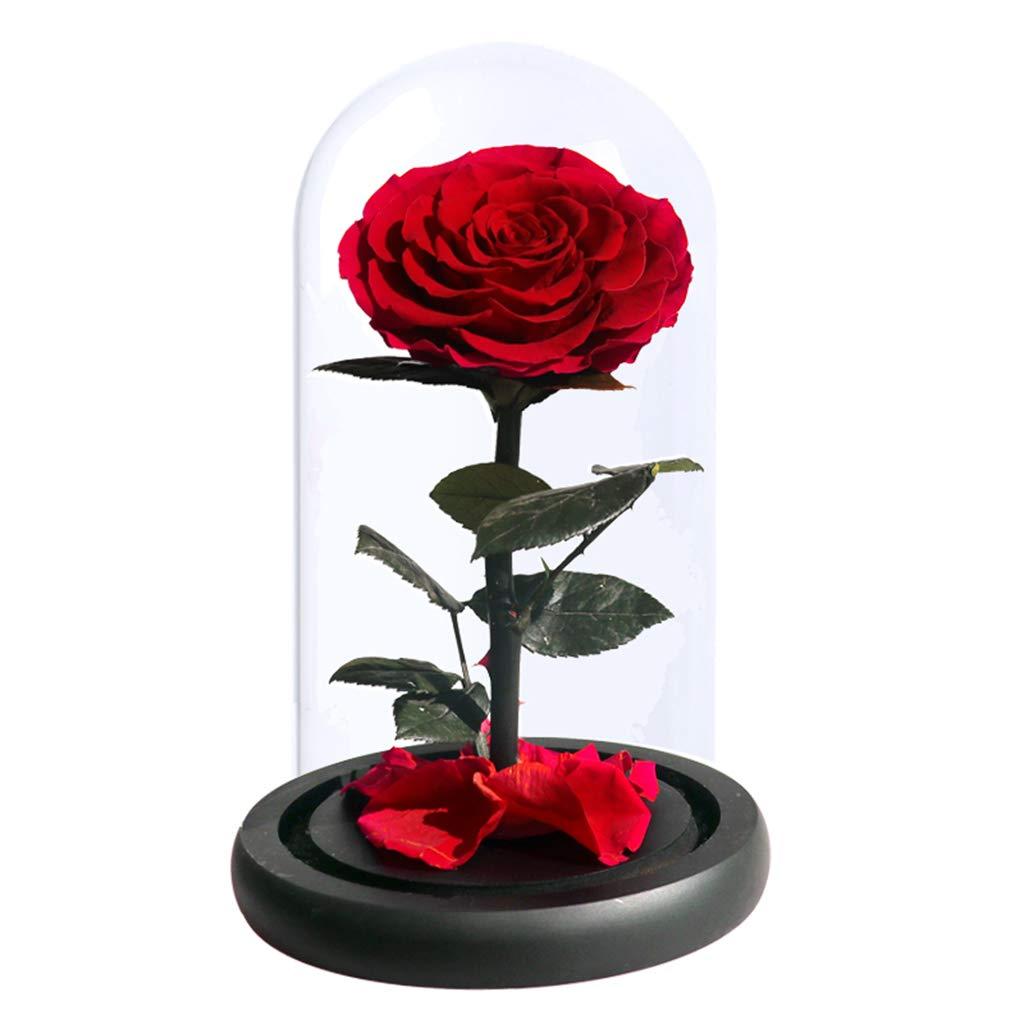 JHNEA La Bella Y La Bestia Rosa Cristal Enchanted Rose Kit ...