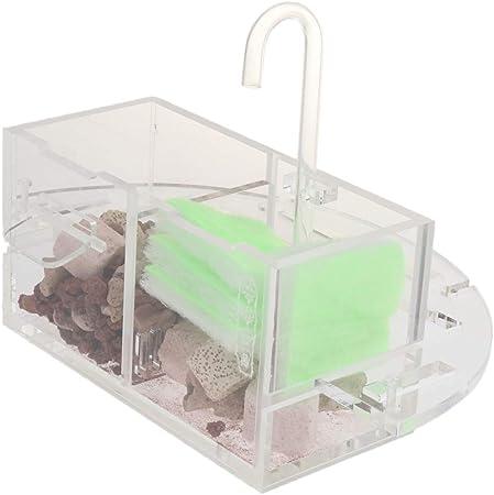 Caja De Filtro Externo para Tanque De Peces Filtros De Acrílico Sin Bomba De Agua Transparente - M: Amazon.es: Hogar