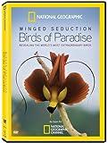 Winged Seduction:bird/paradise