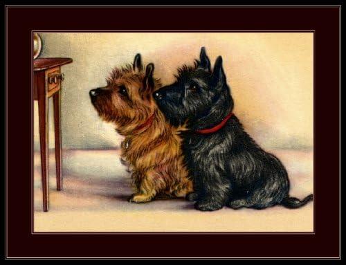 Terrier escocés 100/% Algodón Impreso Tejido escocés Perro