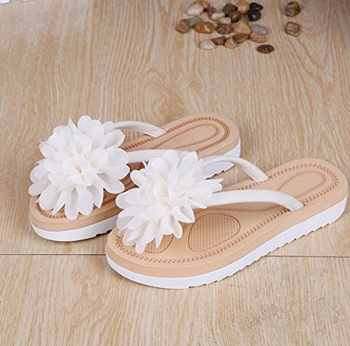 Femmes Banchao Bel Summer seven Han Fashion De Fleur la Thirty Khskx Student Attelle Tongs Appartement vpYPwB