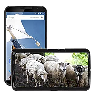 Hot Style Cell Phone PC Hard Case Cover // M00111601 Sheep Flock Flock Of Sheep Animals // LG Google Nexus 6