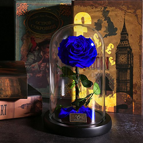 Rose Flowers, Forever Flowers, Glamorous Rose Glass, Roses in Glass Dome Wood Base, Family Holiday Party Valentine's Day Creative Gifts, Wedding Gifts, Best Gifts for Her (blue) by Dream of Flowers (Image #5)